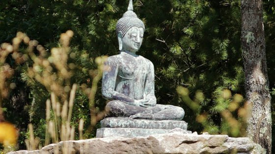 Mindfulness Meditation Practice in San Marcos, Tx